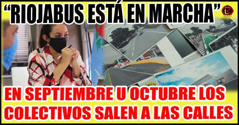 Lo dijo la Secretaria de Transporte y Movilidad Alcira Brizuela