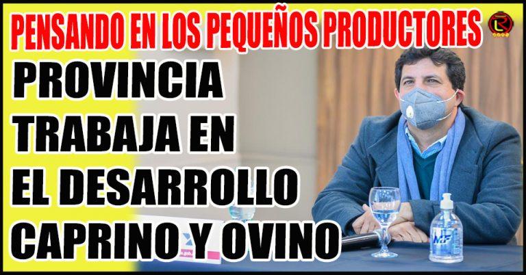 Cabrito Mamón Riojano, calidad y comercialización