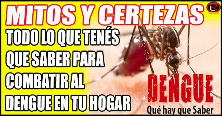 La prevención del mosquito debe hacerse todo el año