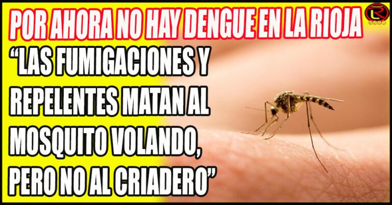 Bizzotto dio consejos para prevenir el Dengue en el Hogar