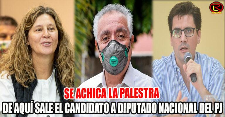 Gaby Pedrali, Juan Vergara o Juan Luna se mudarían al Congreso Nacional