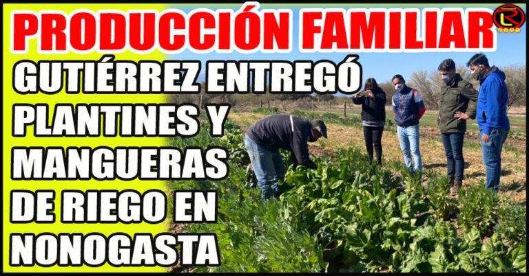 Contribución sustancial a las economías familiares